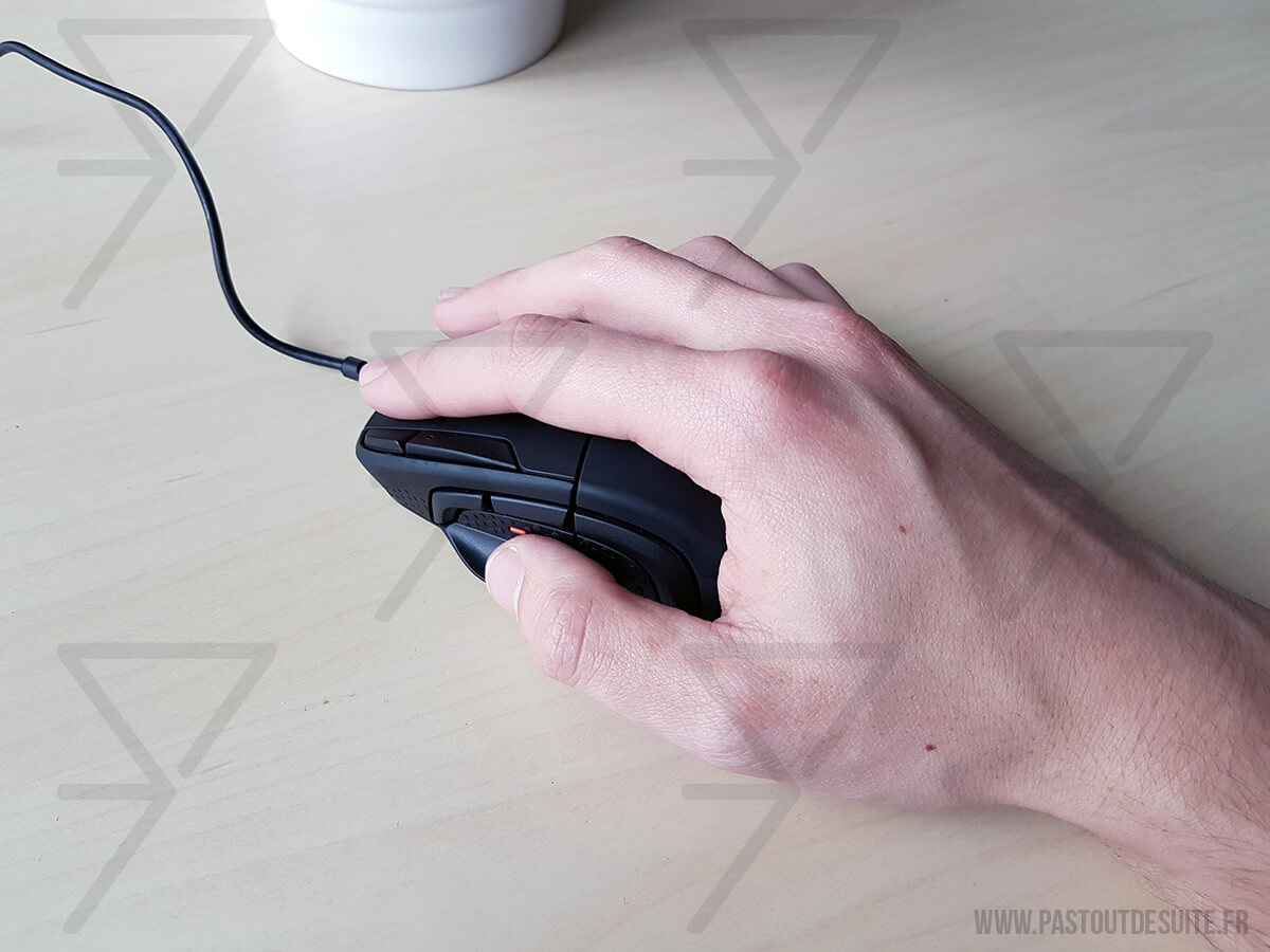 SteelSeries Rival 500 Palm