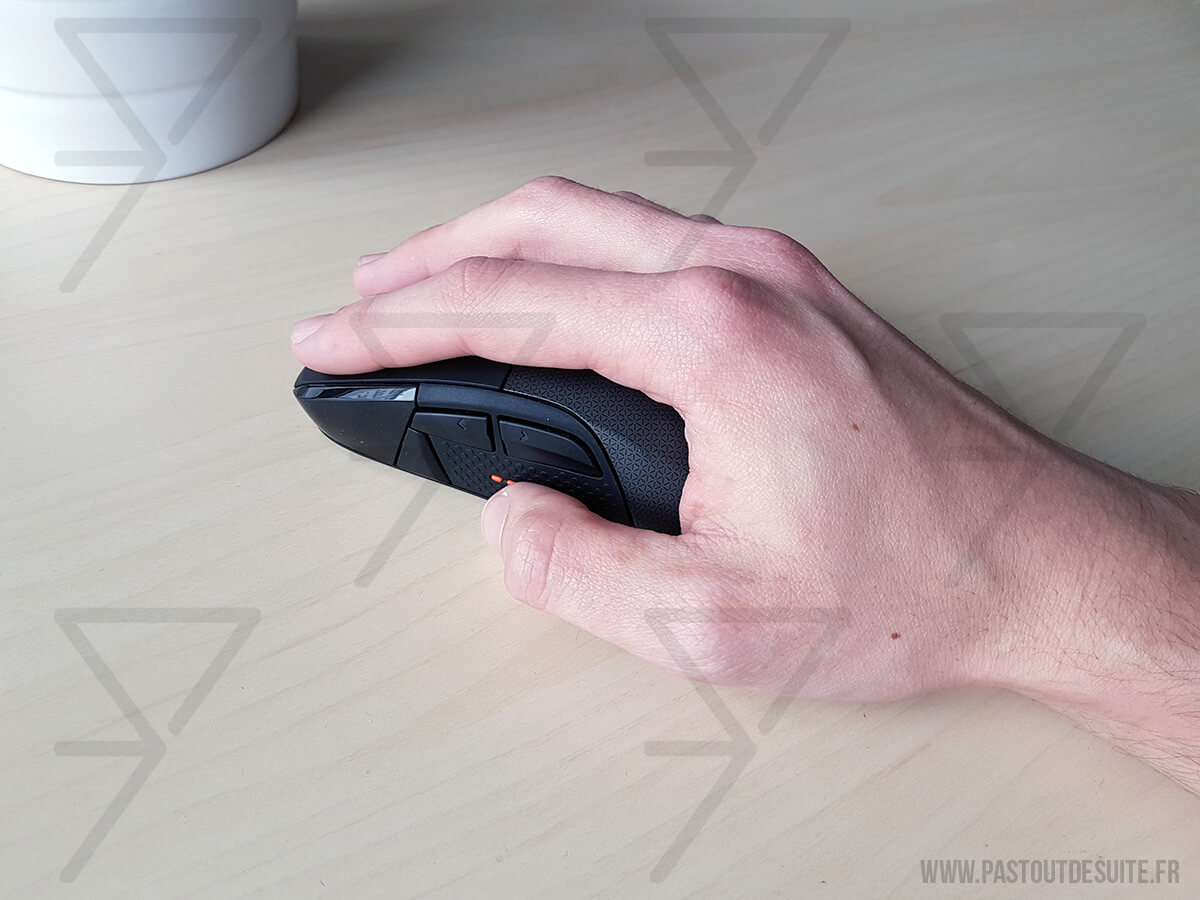 SteelSeries Rival 700 Palm